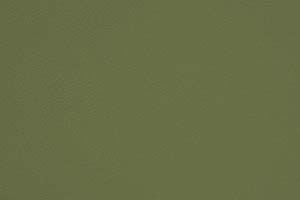 [Eランク] ガーディアンLL_15